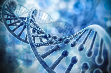 DNA Testing in Los Angeles (LAX)