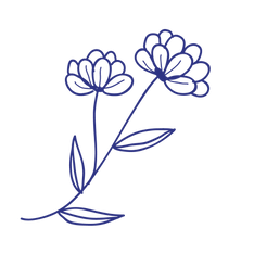 fleurs-site-04.png