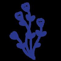 fleurs-site-02.png