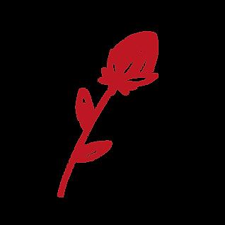 fleurs-site-03.png