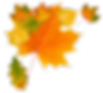 autumn_leaves_PNG3612-170x154.png