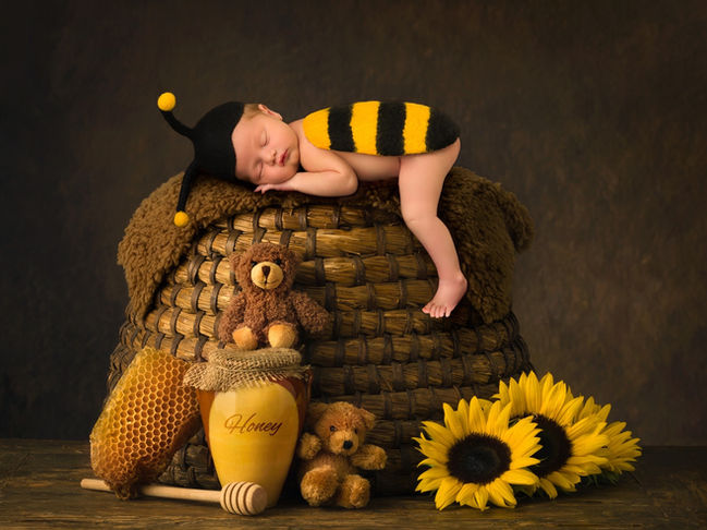 Bumble Bee Newborn Photography