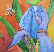 Iris & Bumblebee.jpg