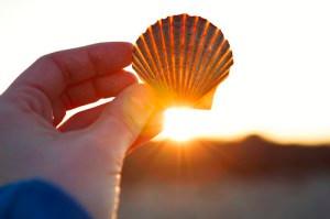 The Sunshine Vitamin Soothes Fibromyalgia