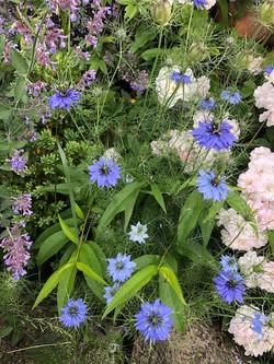 flowersjune18