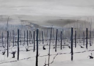 Winter Vines, Piemonte