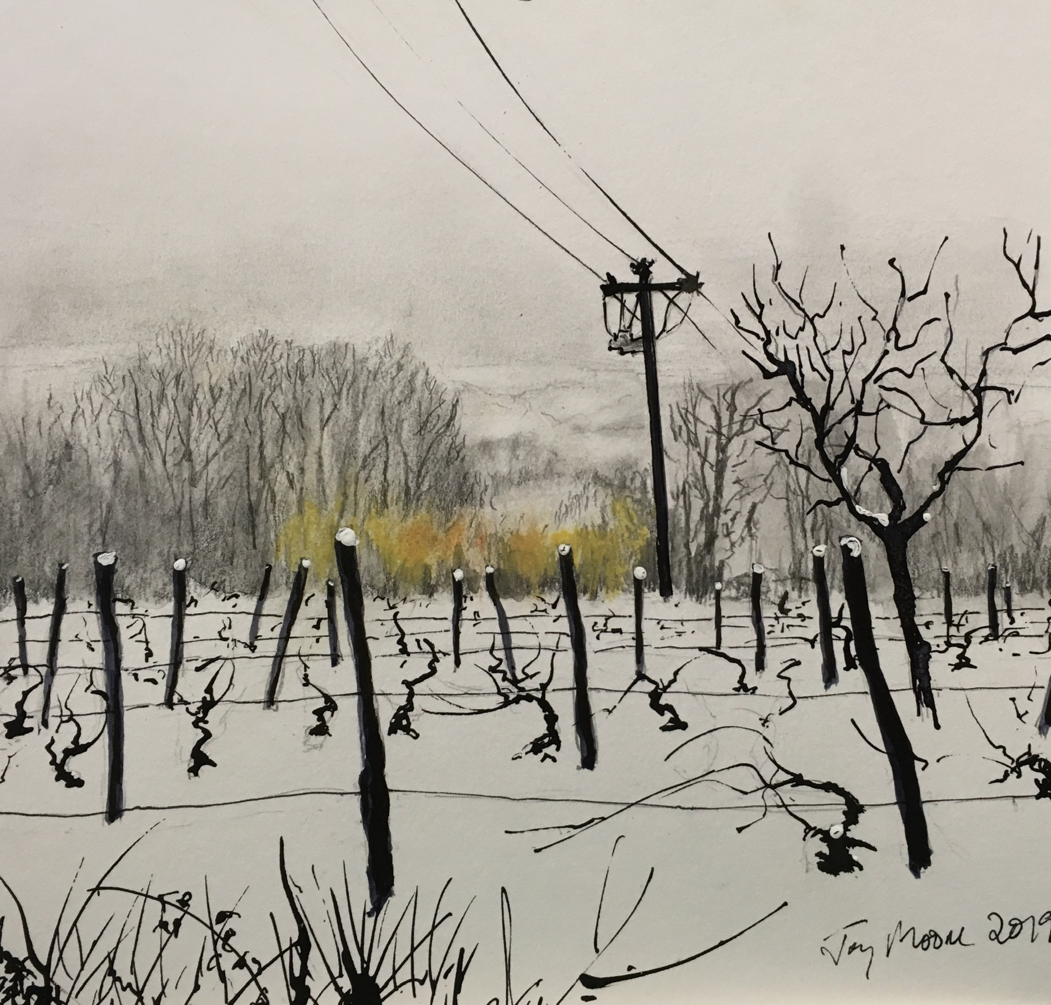 Vines in the Snow (Sold)