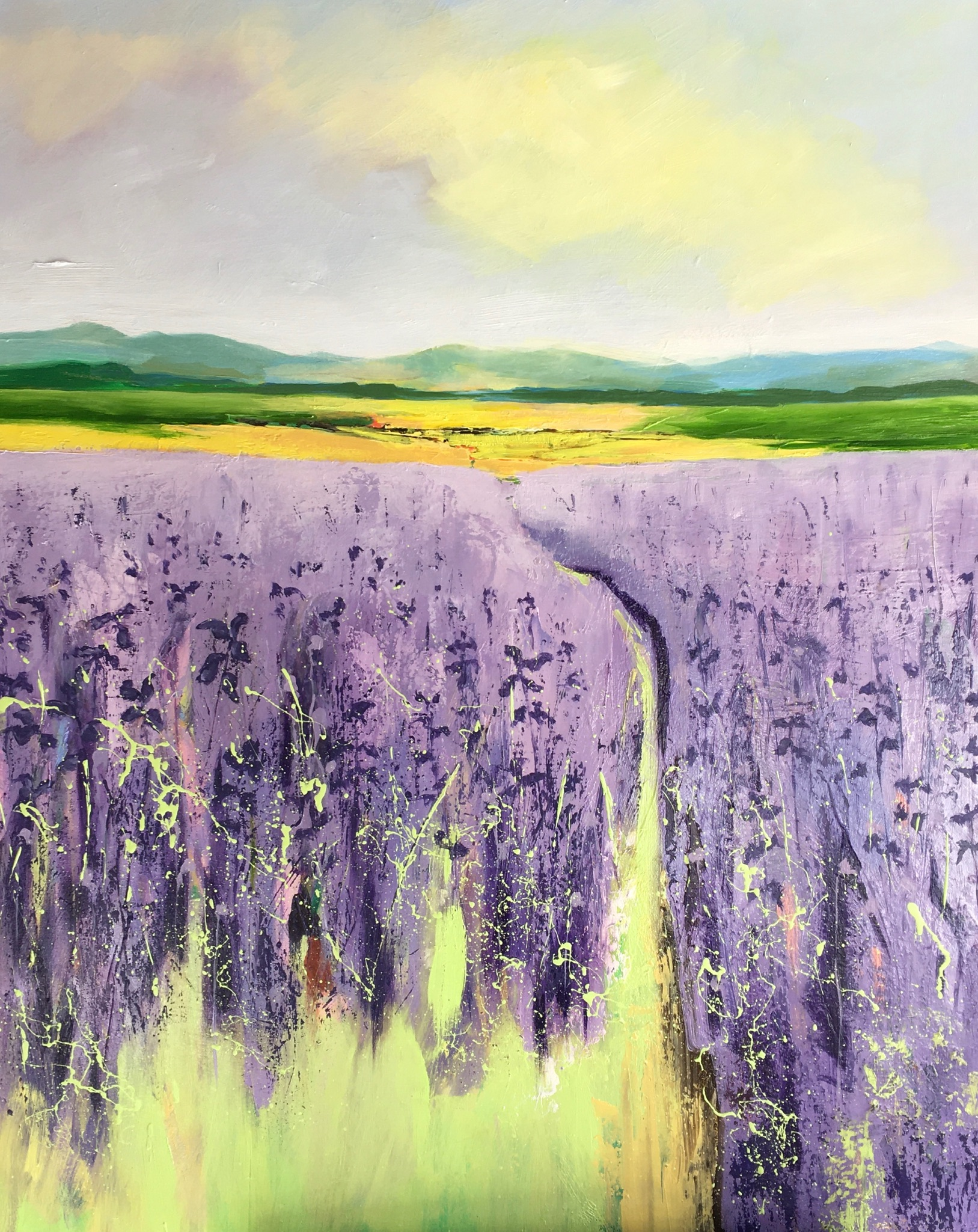 Yellow Field and Purple Flowers