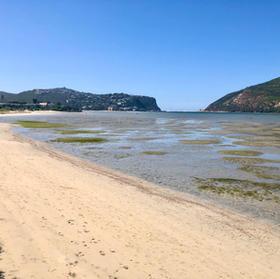 Bollard Beach Low Tide
