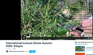 Lecture in public lecture series