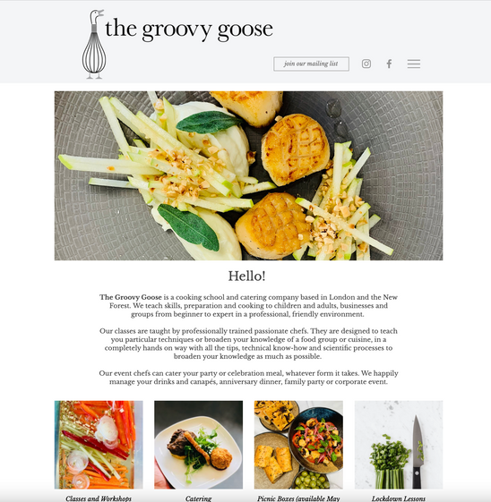 Groovy Goose website home page.png