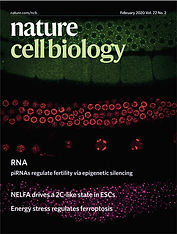 NCB cover JPEG.jpg