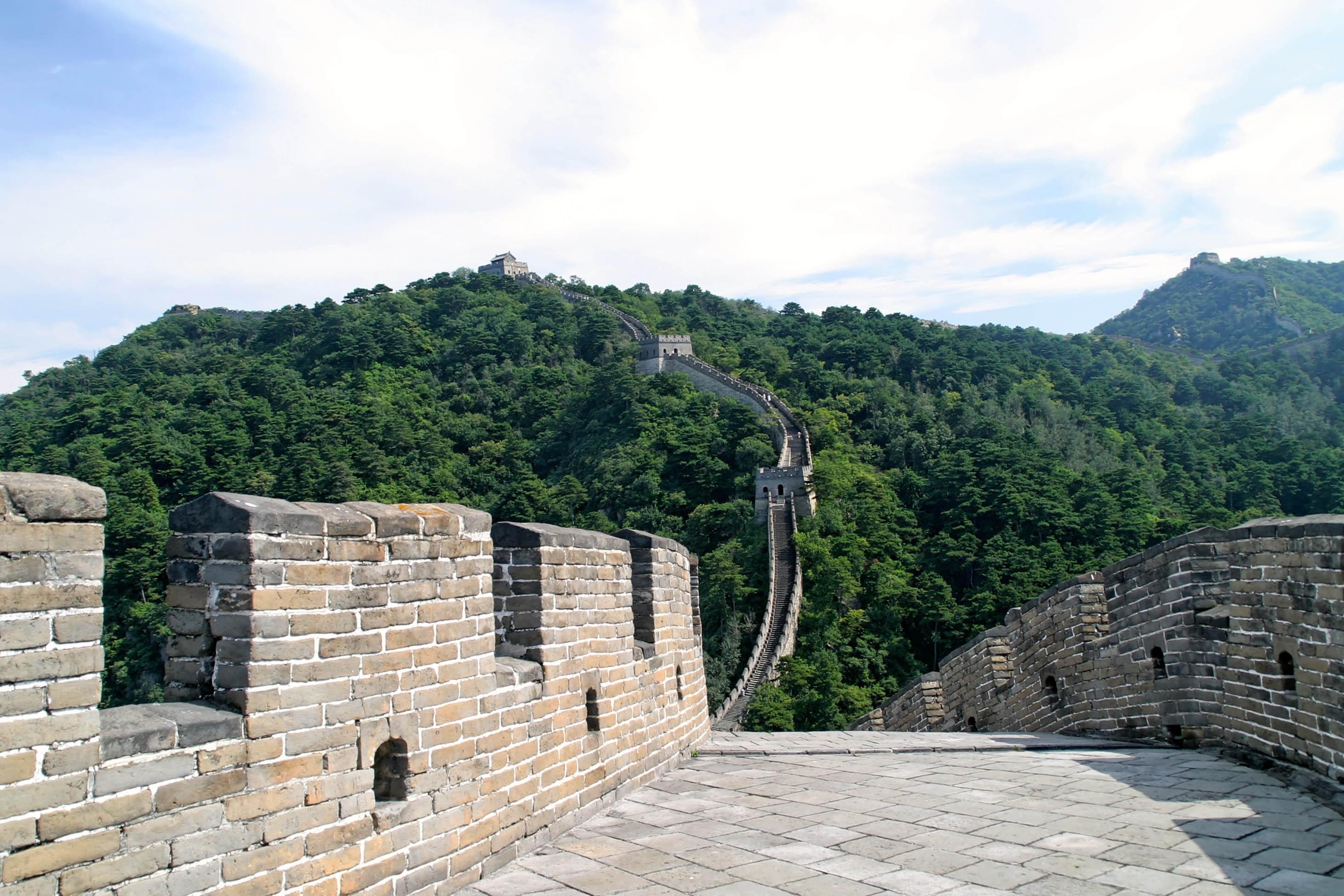 chinese-1028101