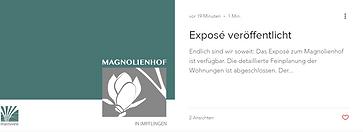 expose_veröffentlicht.PNG