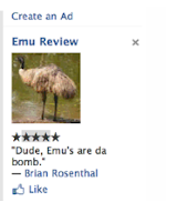 Facebook Testing New Reviews Ad Format