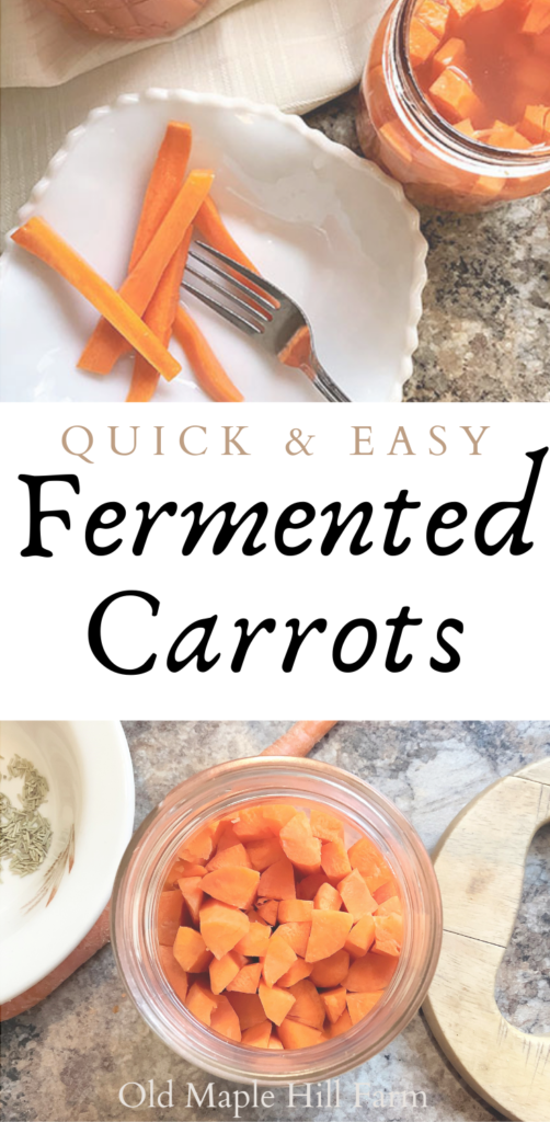 quick and easy fermented carrot recipe #fermentedfoods #fermentedcarrots #wholefoodrecipe #healthy #carrots