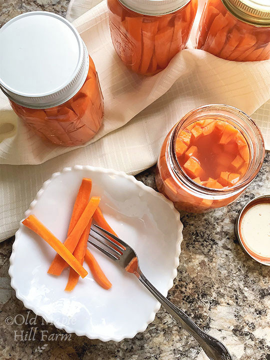 fermented carrot sticks in a white bowl with fork
