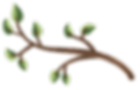 large branch.png