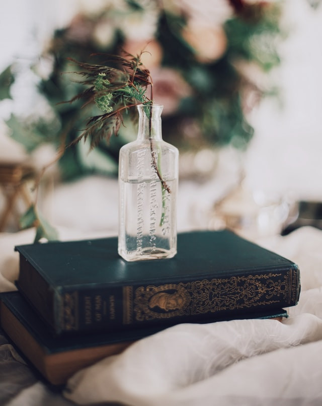 a calming photo of an old bottle holding a plant sitting on a book