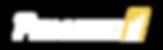 Pematic Logo White.png