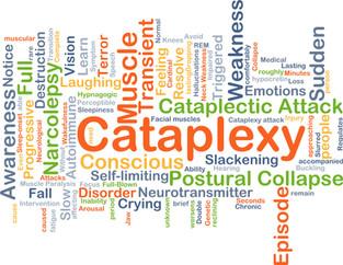 What is Cataplexy?