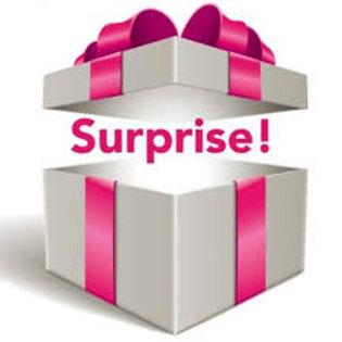 Little Gloss Boss Surprise Box