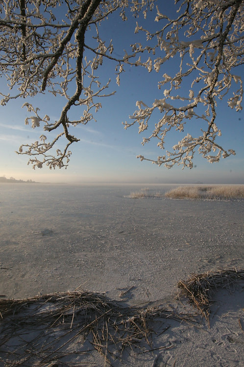 Frozen Lake 2009