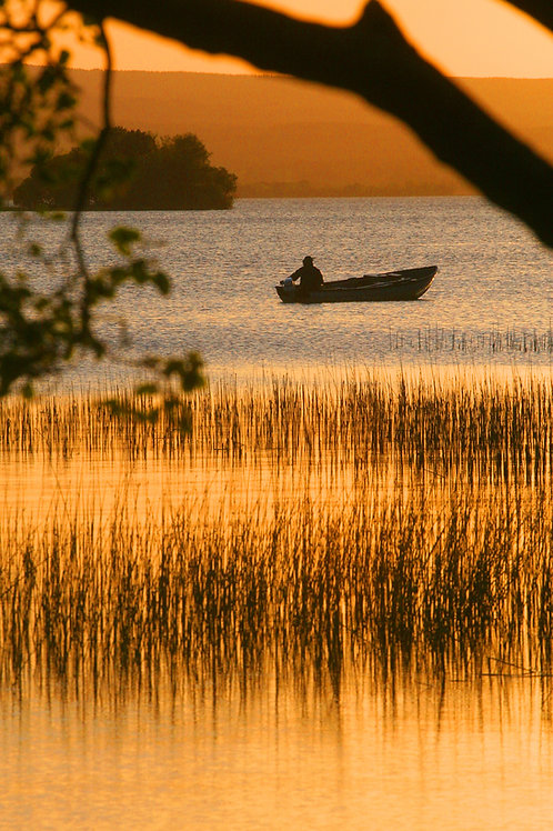 Boating on a Summer's Evening