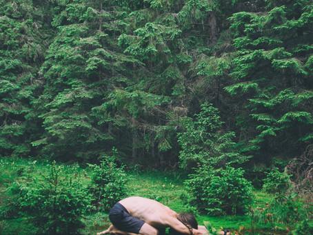 Bhakti Yoga: The Yoga of Devotion