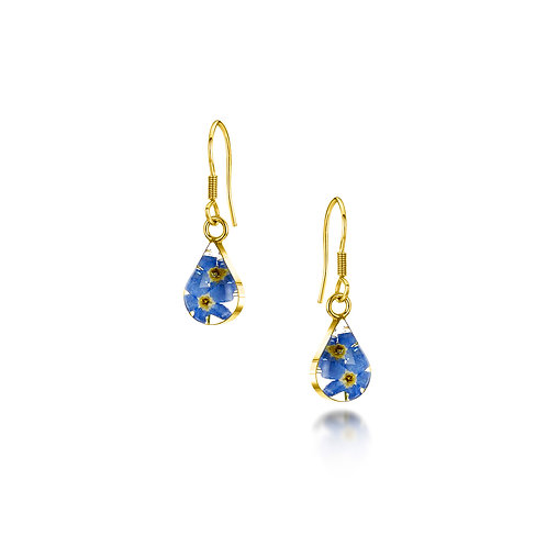 Shrieking Violet - Gold plated Stirling Silver Forget-me-not earrings