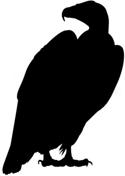 dirtybird3.png