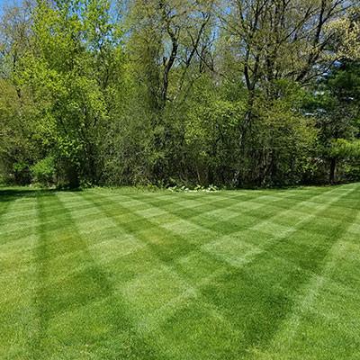 stripes3.jpg