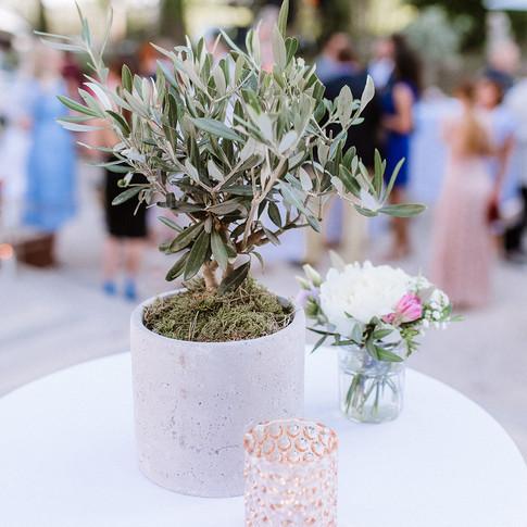 Flowers Provence.jpg