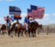 Horses & American Flags