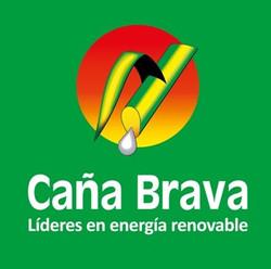 20._Caña_Brava