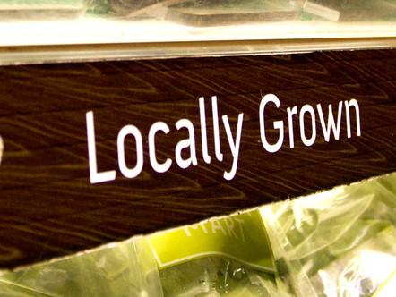 It's no cash crop (yet), but hemp cultivation may spur universities to hire a Salt Lake City asset