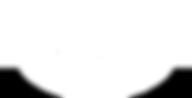 Sanderson Farms logo wt.png