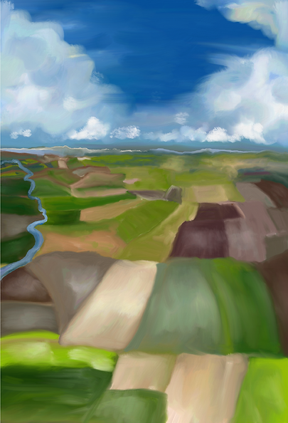 Aerial Farmland Painting LWS 2020.png