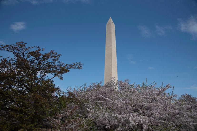 DC Monument.jpg