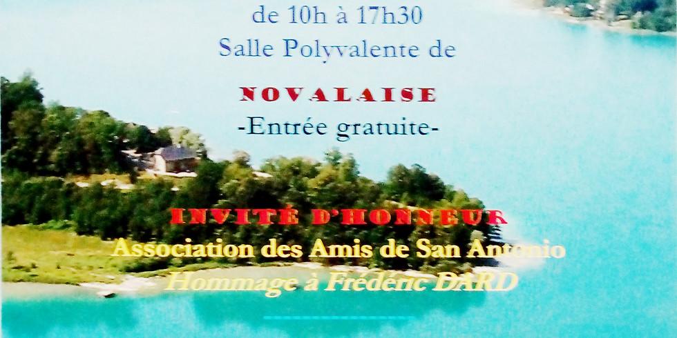 Salon du livre de Novalaise avec les Auteurs Savoyards (la SAS)