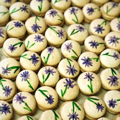 Painted Macarons.jpg