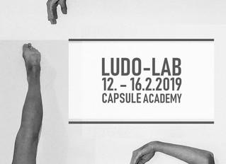 Ludo-Lab: 12. - 16 Feb. 2019