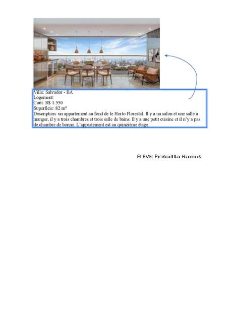 LOGEMENTS BRESIL-3