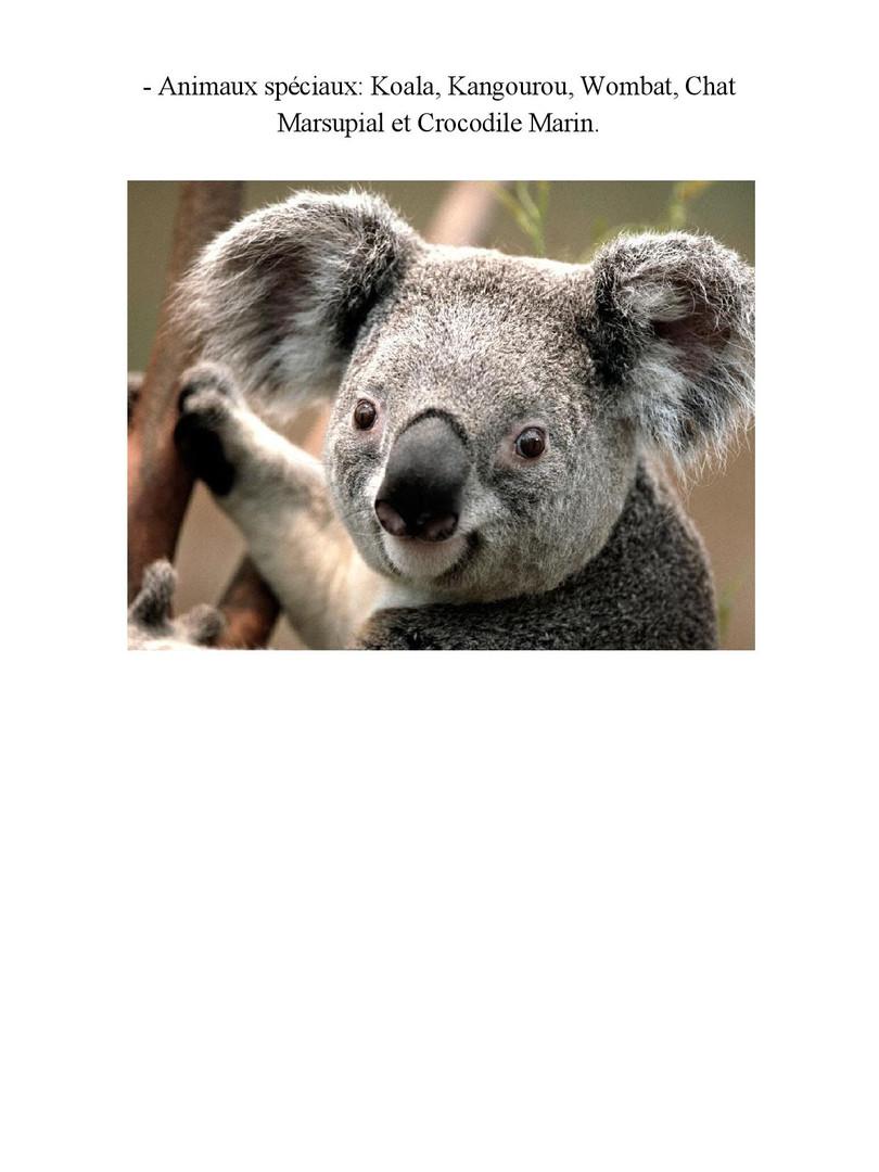 AUSTRALIE- 5
