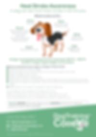 Dog Training College Heat Stroke Awarene