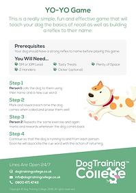 Dog Training College YO-YO Game.png