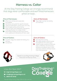 Dog Training College Harness VS Collar F