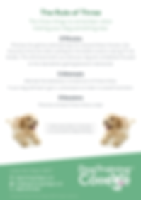 Dog Training College The Rule of Three F