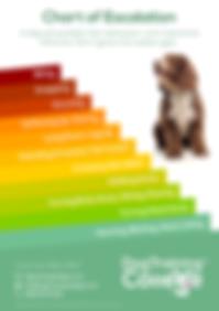 Dog Training College Ladder of Aggressio
