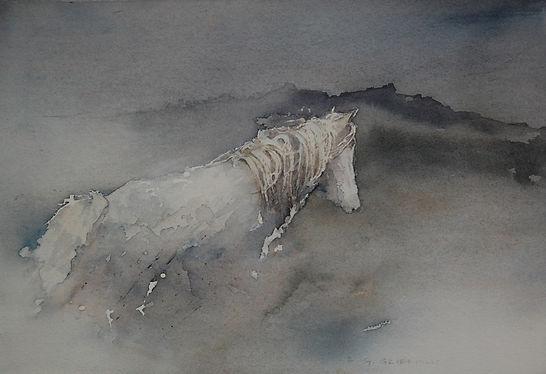 Carneddau pony web.jpg